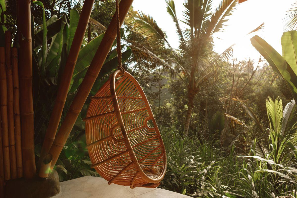 Rattan-Hängesessel inmitten von Palmen